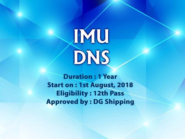 IMU-DNS